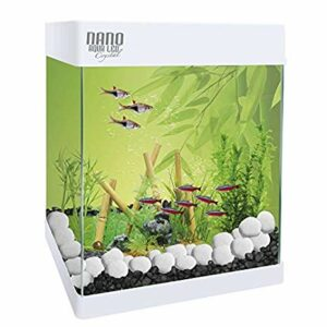 kit acuario betta 4