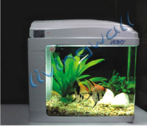 kit acuario betta 6