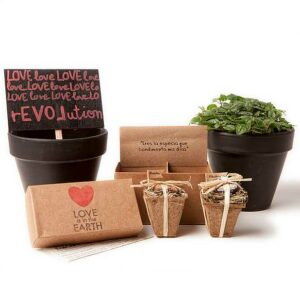 kit cultivo flores comestibles 1
