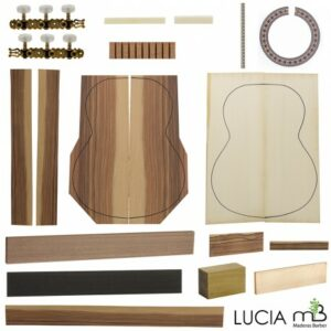 kit guitarra telecaster 9
